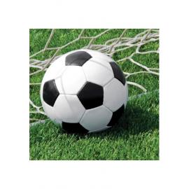 TOVAGLIOLI CALCIO (3D - Soccer) 33x33cm - 16 Pz.